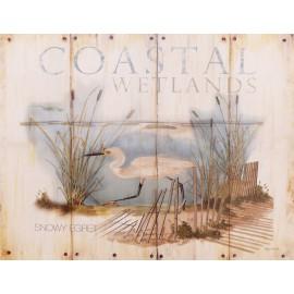 Carte d'art oiseau des dunes snowy egret
