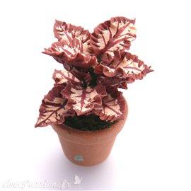 Miniature vitrine plante rouge 2x4cm
