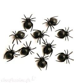 Miniature vitrine 1 araignée 2x1cm
