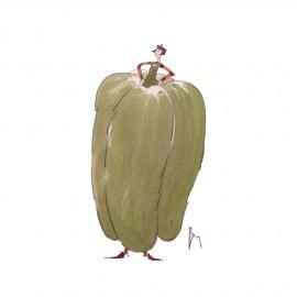 Aquarelle Brigitte Misériaux poivron vert