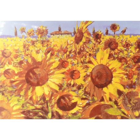 Carte postale fleurs les tournesols