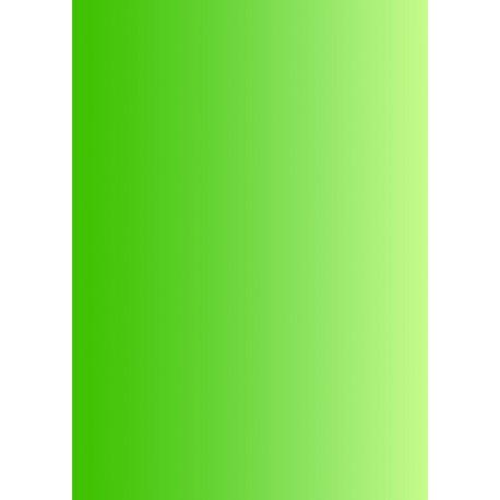 Pergamano feuille parchemin vert dégradé 61581 à l'unité