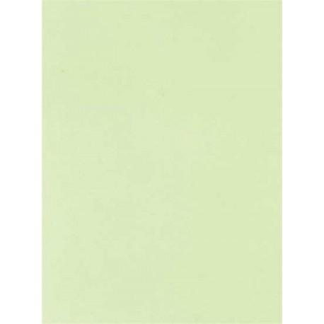 Pergamano feuille parchemin vert limon 61600 à l'unité