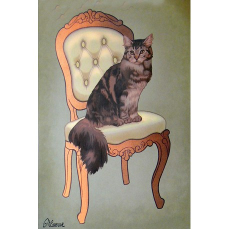Carte postale chat Maryline Cazenave mainecoon