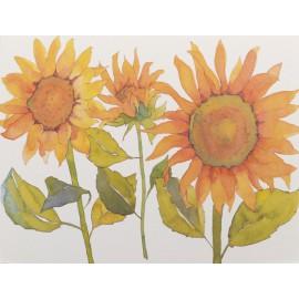 Carte postale fleurs tournesols