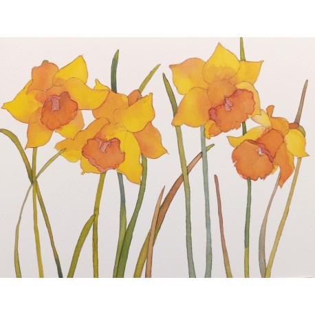 cartes postales fleurs encadrement jonquilles achat vente. Black Bedroom Furniture Sets. Home Design Ideas