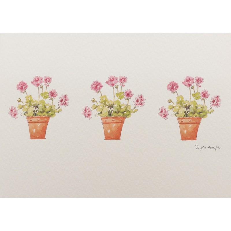 cartes postales fleurs encadrement geranium achat vente. Black Bedroom Furniture Sets. Home Design Ideas